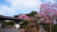 芦ノ湖温泉 匠の宿 佳松の詳細