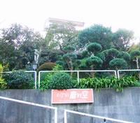 真鶴民宿 お宿青い空の詳細
