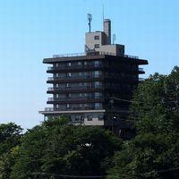 鹿の湯源泉かけ流しの宿 松川屋那須高原ホテルの詳細