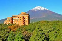 富士之堡華園ホテル(イー・ホリデーズ提供)の詳細