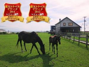 ホースヴィレッジペンション馬の宿