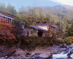 小坂の炭酸泉の宿 仙游館