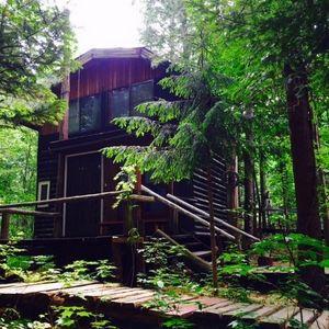 森林の中の貸別荘 ログ由縁