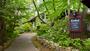 モロアの森ランボォ
