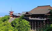 【京都観光】ガイドの案内で楽しみ倍増