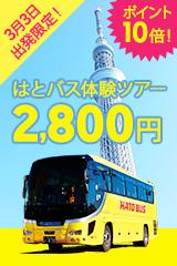 3/3出発限定!はとバス体験ツアー!