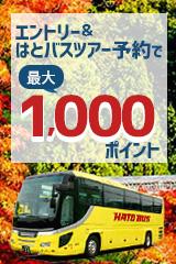はとバス最大1,000ポイント