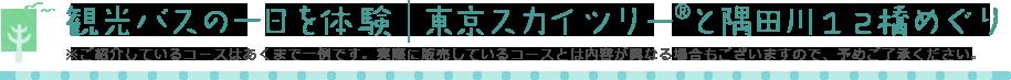 観光バスの一日を体験 東京スカイツリーと隅田川12橋めぐり