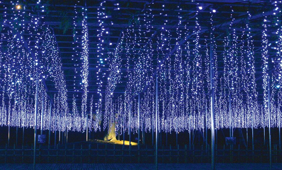 あしかが「光の花の庭」&魅惑のスイーツビュッフェと世界遺産の日光散策