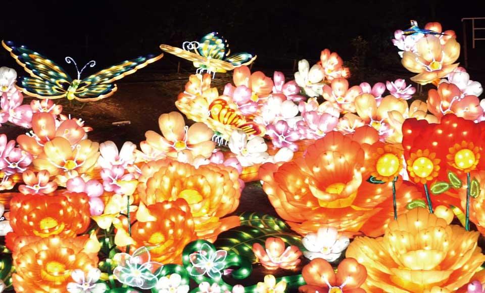 ヒルトン小田原ランチビュッフェと圧巻の光の大海原「グランイルミ」