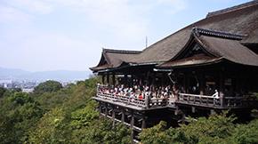 京都 定期観光バス