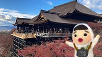京都の1日観光タクシーに乗ってみた