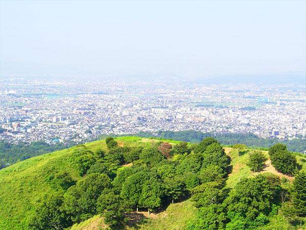 B 奈良公園3名所と春日奥山めぐり