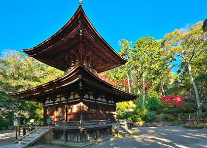 現地スタッフ厳選!滋賀県のおすすめ観光スポットBEST20