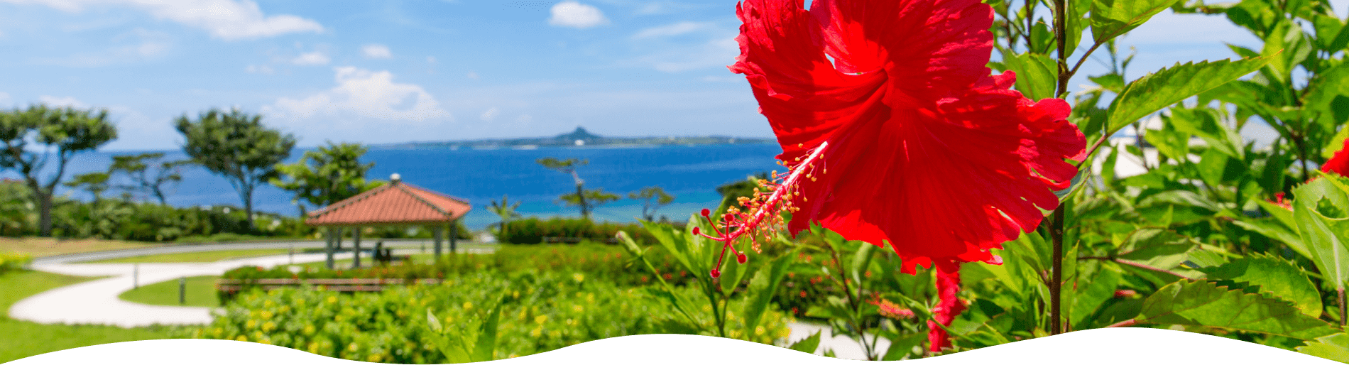 南の島をレンタカーで!沖縄特集