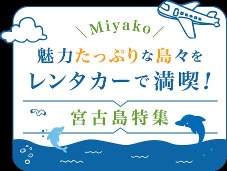 宮古島レンタカー~雄大な自然を楽しめる沖縄・宮古島