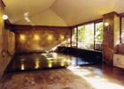 フォレストリゾート 湯の里 杉菜