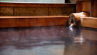 岩瀬湯本温泉 ひのき風呂の宿 分家