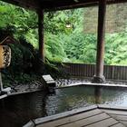秋の宮温泉郷 鷹の湯温泉