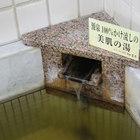 寒河江温泉 割烹旅館 吉本
