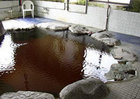 斜里温泉 湯元館