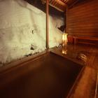 水芭蕉の宿 温泉 ひがし