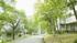 リゾートヴィラ高山(旧 森のコテージ ヴィラージュ荘川高原)