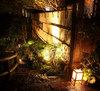 箱根夢物語 かぐや姫 月の恋心 (旧ともぎく)