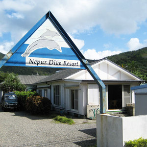 奄美大島の海の幸がおすすめの民宿