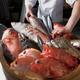 新鮮な食材「地魚」