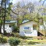 南砺市桜ヶ池自然活用施設 自遊の森
