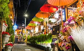 いまソウルで訪れたい注目の街、益善洞!