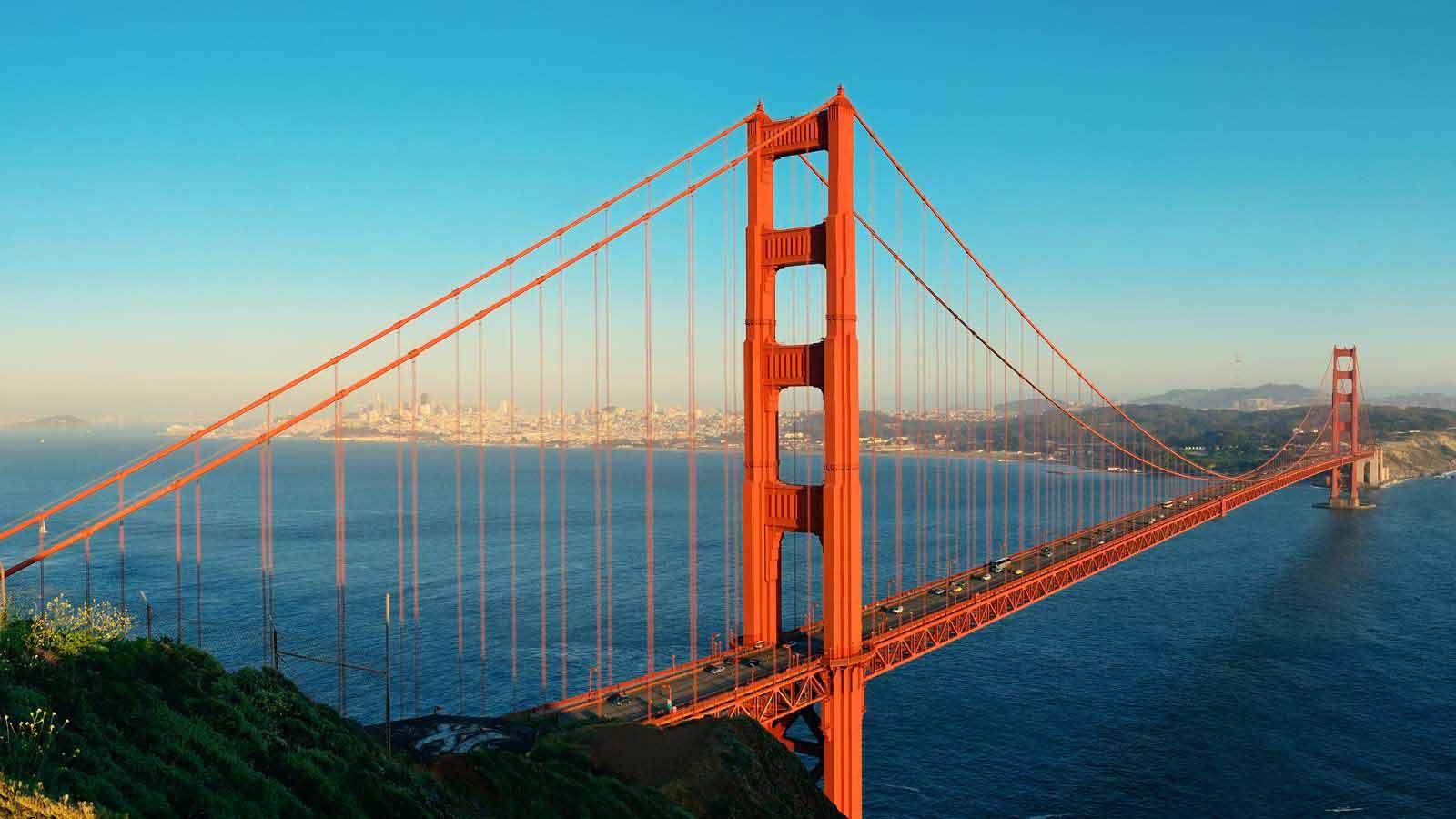 サンフランシス人気ランキングTOP10