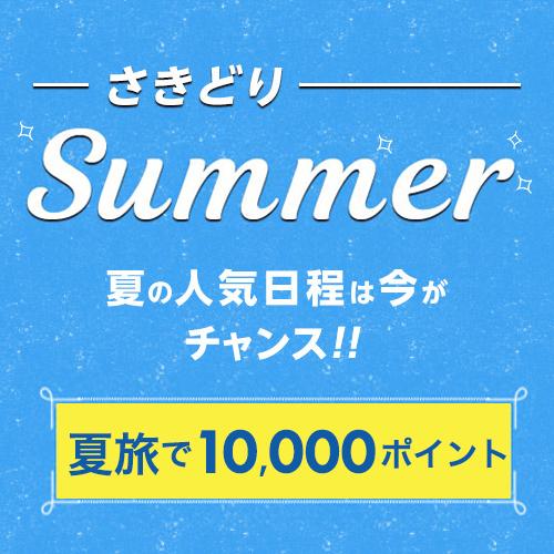 【さきどりサマー】2連泊でウェルカムビール付+WiFi、大浴場、プール利用無料♪日本語対応可!