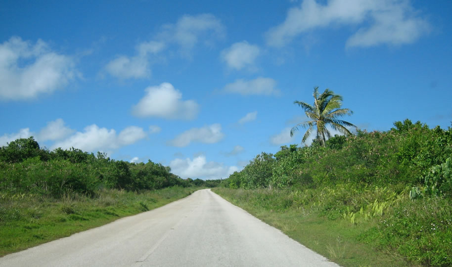 爽快な気分を加速する絶景ドライブを楽しむ