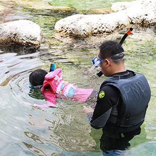 泳げる水族館