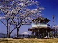 弘法山公園・写真
