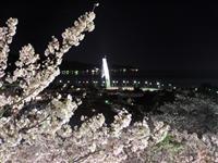朝日山公園・写真
