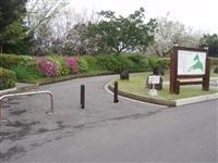 桜島自然恐竜公園・写真