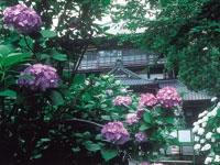 曹源寺(さざえ堂)・写真