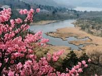 覚満淵(赤城山)・写真
