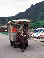 榛名湖畔トテ馬車・写真