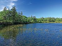 神仙沼・写真