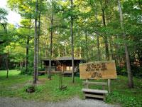 麓郷の森・写真