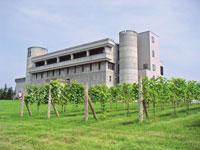 ワイン城・写真