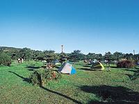稚内森林公園キャンプ場・写真