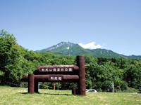 利尻山見返台園地・写真