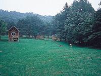ポロト自然休養林キャンプ場・写真