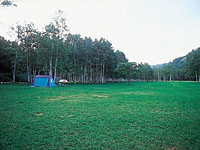 ドロームキャンプフィールド