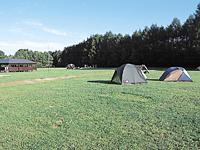 江別市森林キャンプ場・写真